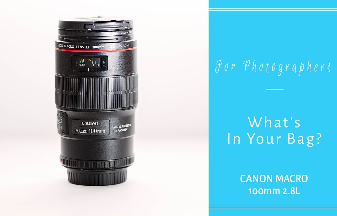 Canon Macro 100mm 2.8L, What's in your bag, nova family photographer, northern virginia family photographer, northern virginia photographer, woodbridge photographer, woodbridge family photographer, virginia photographer, virginia family photographer, canon lens