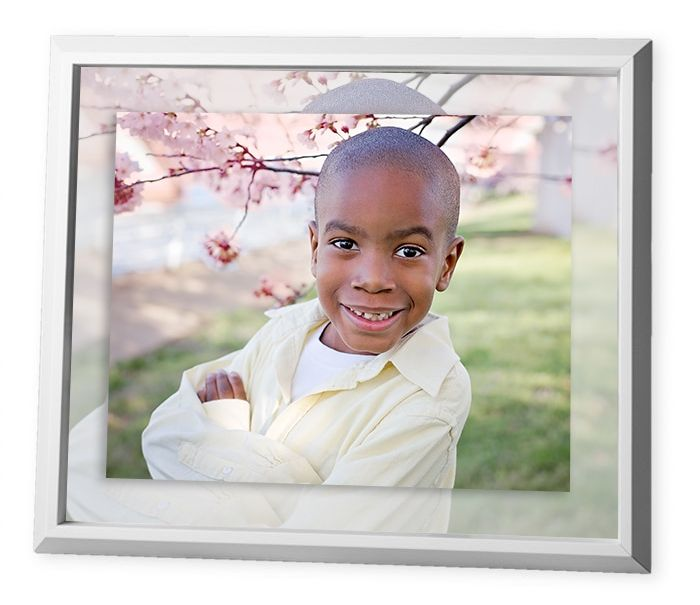 Framed Metal Prints, Cherry Blossom Photographer, Cherry Blossom Family Photographer, Cherry Blossom Family Pictures, Washington D.C. Cherry Blossom Pictures, Washington D.C. Cherry Blossom Portraits, DC Cherry Blossom Photographer, dc cherry blossoms pictures 2017