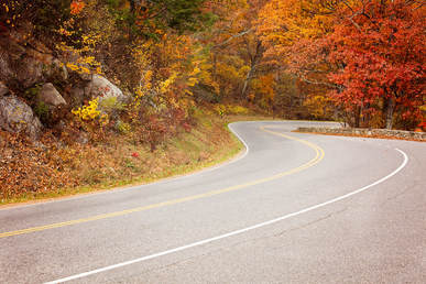 Foliage Ride Locations in Northern Virginia