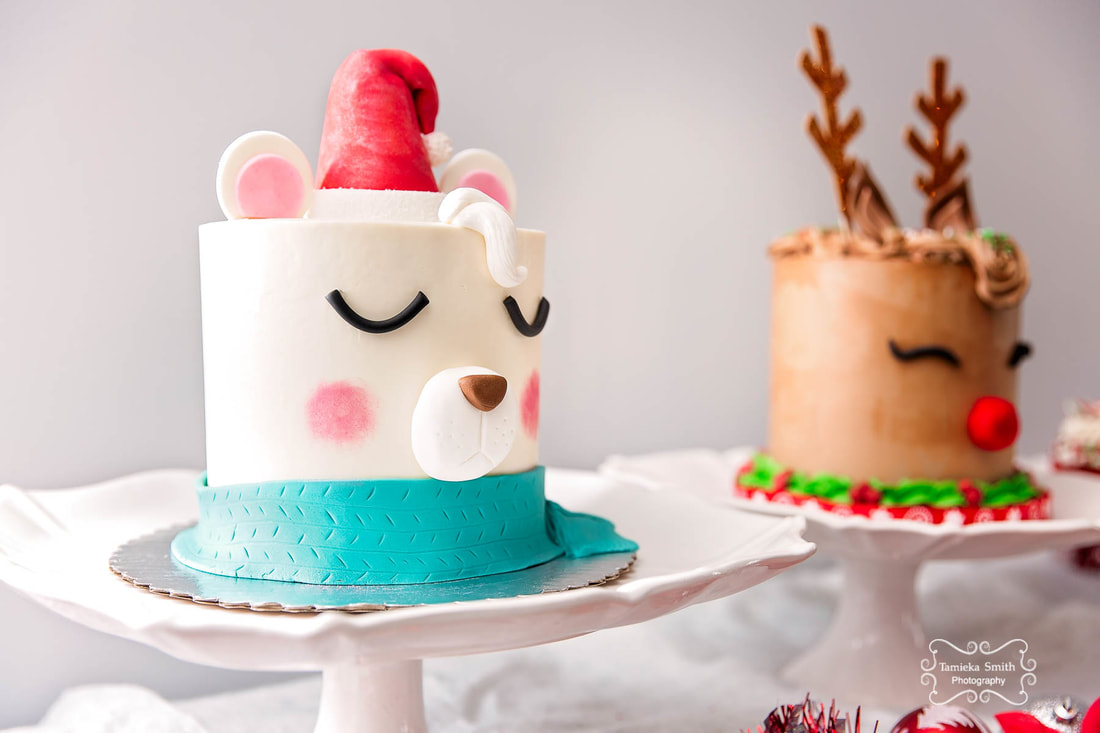 Holiday Cakes, Jazzy Cakes, Northern Virginia Baker, Northern Virginia Family Photographer