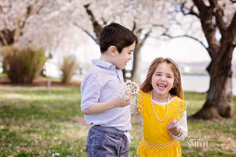 Kids having fun with the Cherry Blossoms in Washington DC